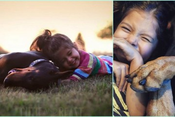 Cutie Siena and Doberman