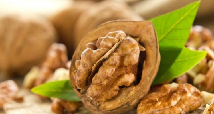 Eat 5 Walnuts daily