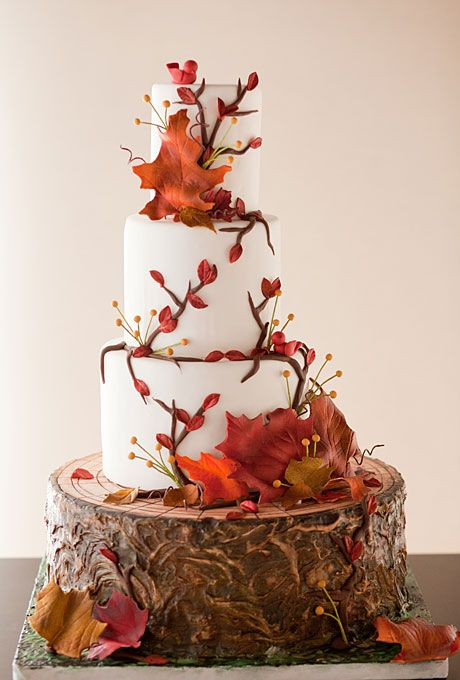 Rustic fall inspired wedding cake