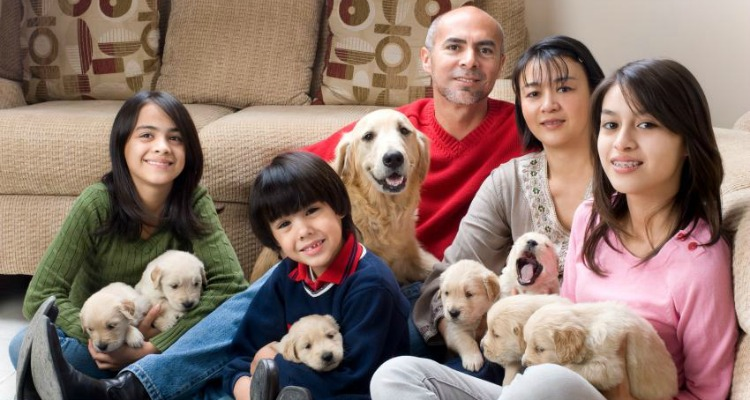 5 Reasons Why Having a Pet in Your House Changes Your Life