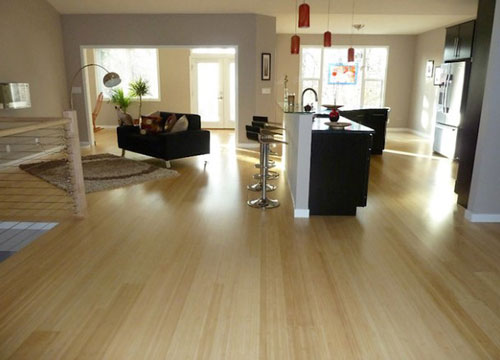 Install Eco Friendly Floors