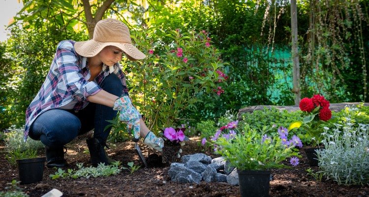 Starting A Garden? Use These 6 Permaculture Techniques